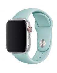 Ремінець силіконовий для Apple Watch 42/44mm (бірюзовий)